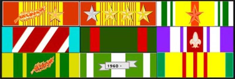 Tiểu đoàn 51 Biệt Động Quân - Anh Thuần 01110