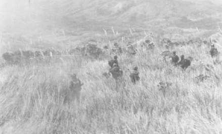 Biệt Ðộng Quân - Trận Lam Sơn 719 Bdqbac12