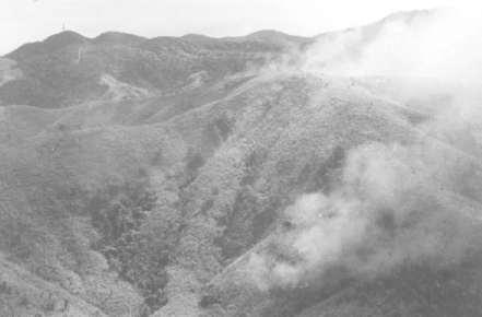 Biệt Ðộng Quân - Trận Lam Sơn 719 Bdqbac14