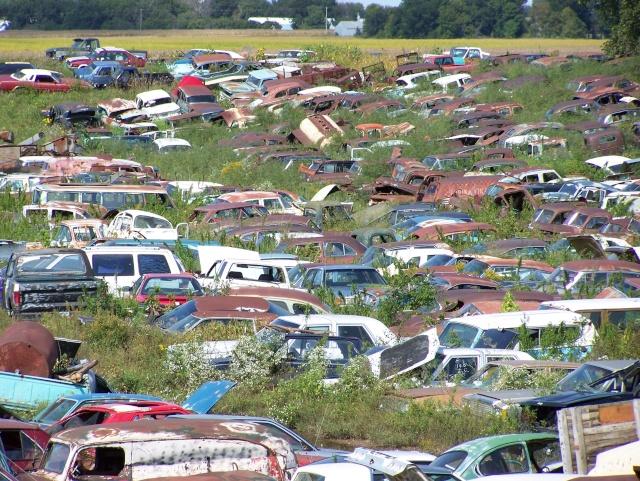 Some junkyard pics Bridle10
