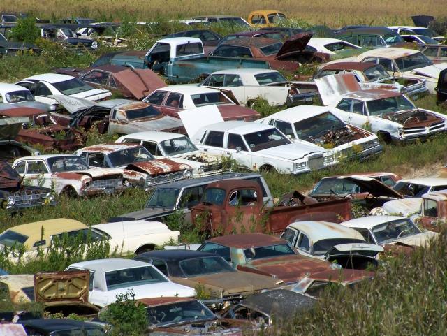 Some junkyard pics Bridle11