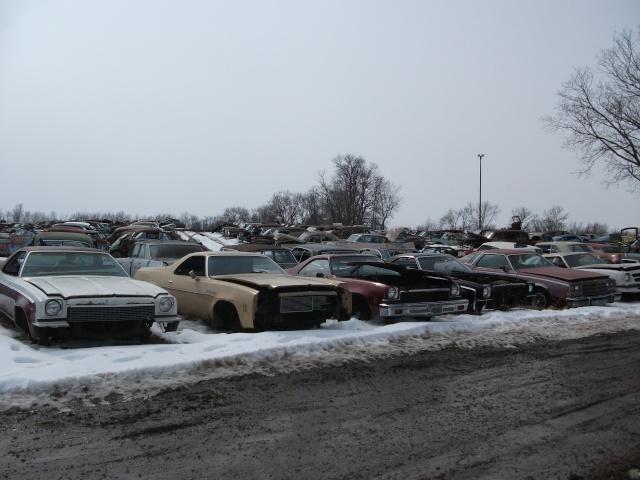 Some junkyard pics Gmabod13