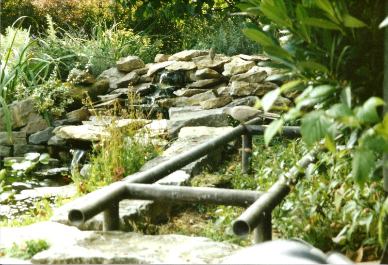 Un étang au jardin puis deux E_1010