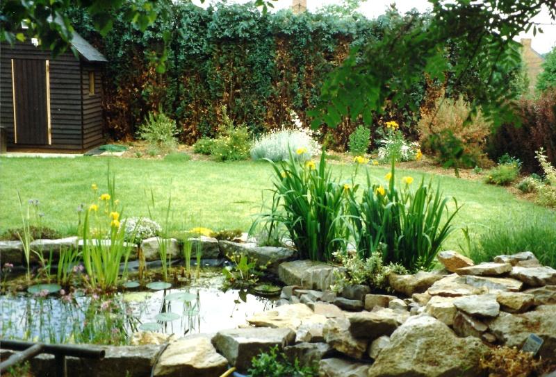 Un étang au jardin puis deux E_1110