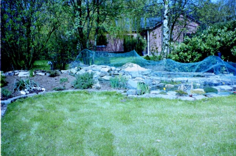 Un étang au jardin puis deux E_1410