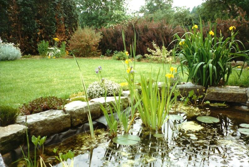 Un étang au jardin puis deux E_1610