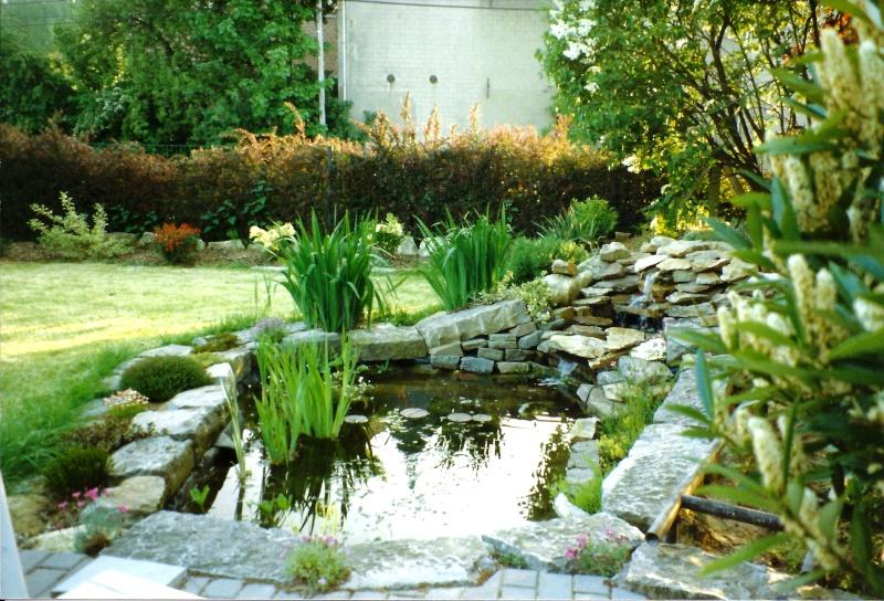 Un étang au jardin puis deux E_1810
