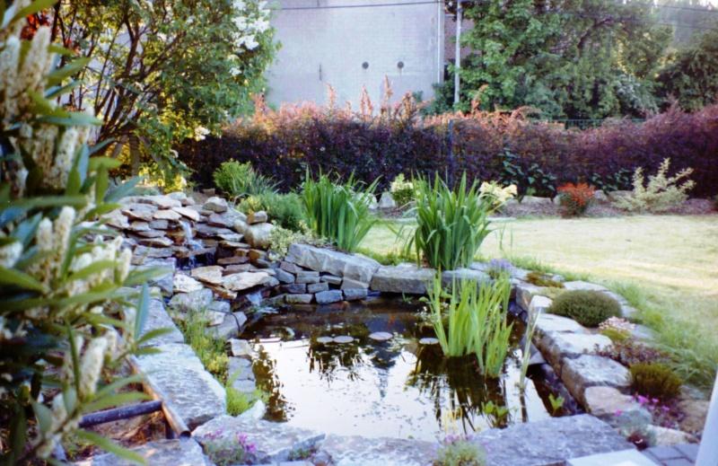 Un étang au jardin puis deux E_2410