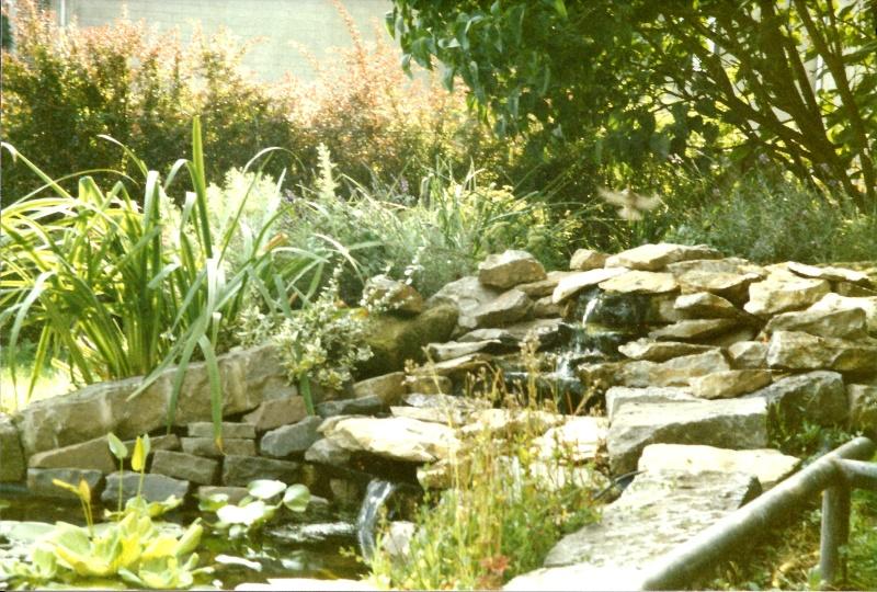 Un étang au jardin puis deux E_910