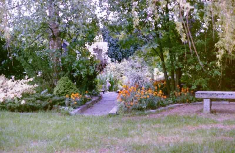 Un étang au jardin puis deux Efc_210