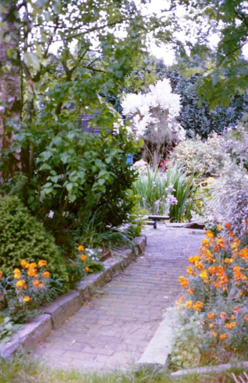 Un étang au jardin puis deux Efc_310