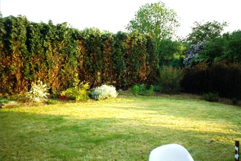 Un étang au jardin puis deux Ep_210