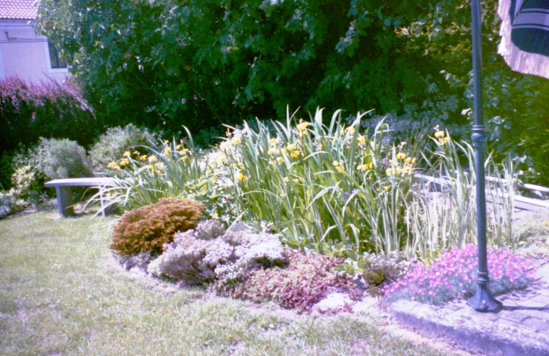 Un étang au jardin puis deux Et_211
