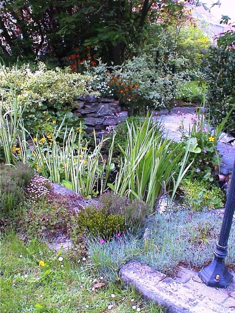 Un étang au jardin puis deux Et_2a10