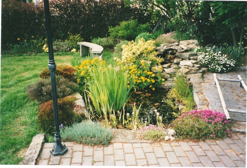 Un étang au jardin puis deux Et_310