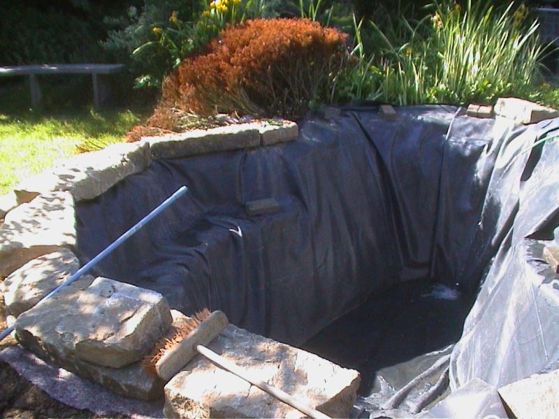 Un étang au jardin puis deux - Page 2 F4110