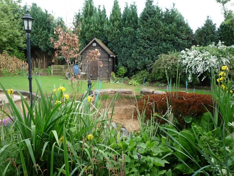 Un étang au jardin puis deux P1000113