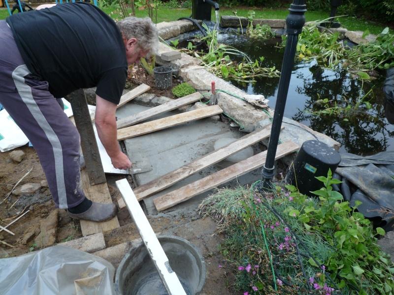 Un étang au jardin puis deux - Page 2 P1000212