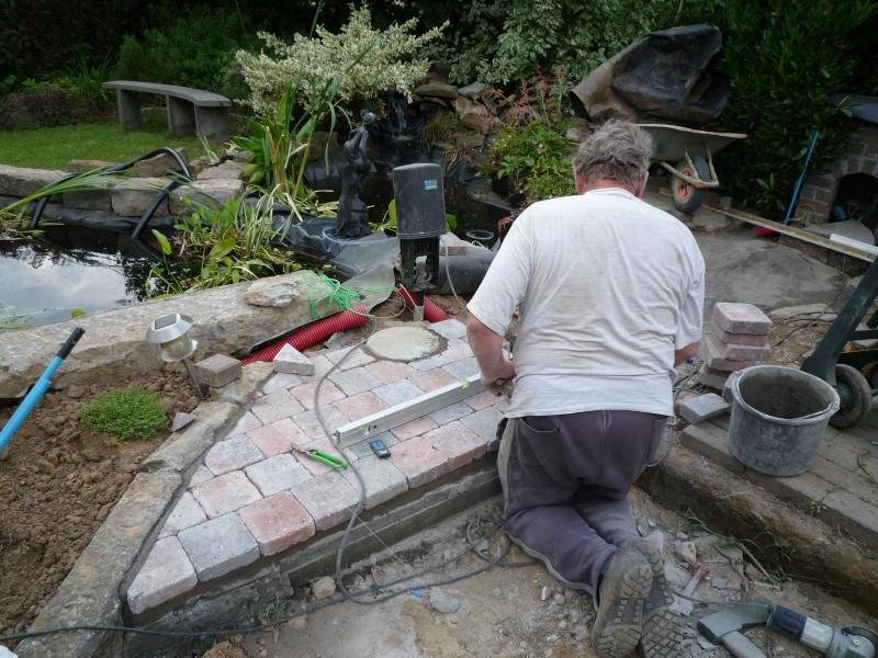 Un étang au jardin puis deux - Page 2 P1000222
