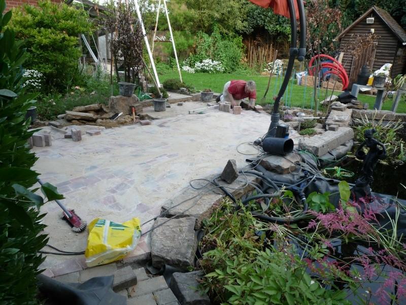 Un étang au jardin puis deux - Page 2 P1000237