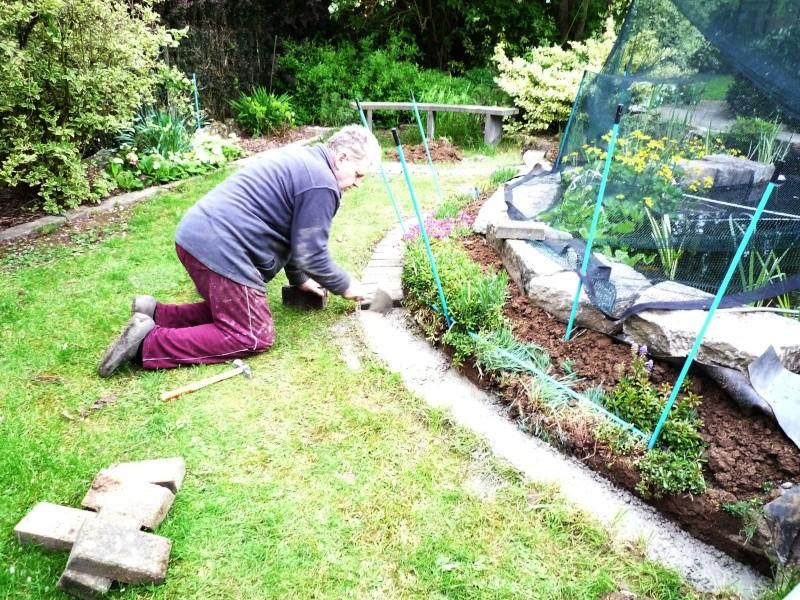 Un étang au jardin puis deux - Page 2 P1010011