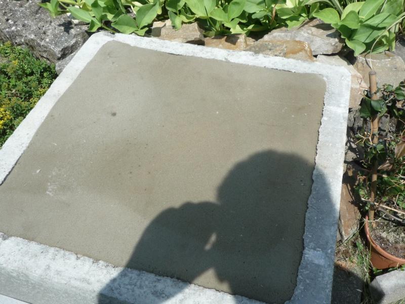 Un étang au jardin puis deux - Page 2 P1030113