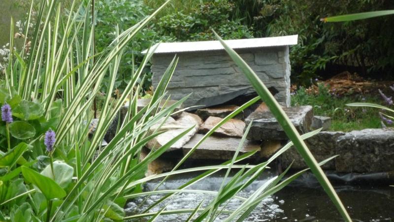Un étang au jardin puis deux - Page 2 P1030913