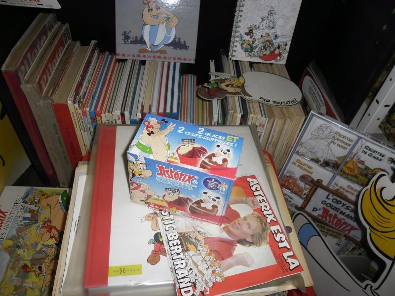 collection asterix de mas08ter - Page 9 Sam_2427