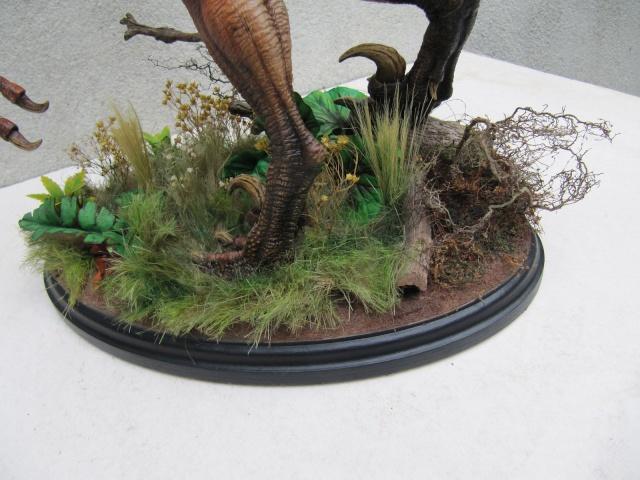 Vélociraptor Jurassic Park. - Page 2 Img_8011
