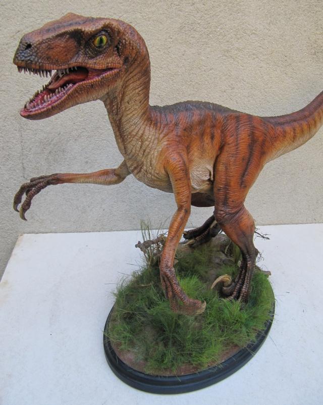Vélociraptor Jurassic Park. - Page 2 Img_8213
