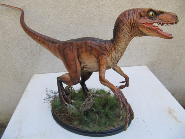 Vélociraptor Jurassic Park. - Page 2 Img_8215