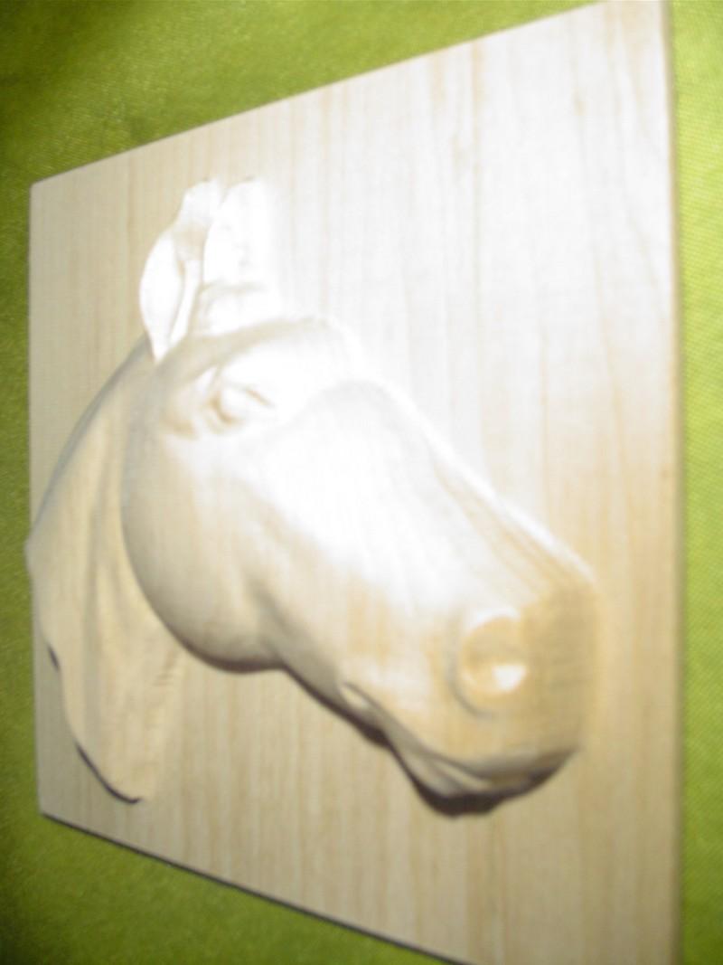 """Derniere """"sculpture""""  à la 6040 Dsc00612"""