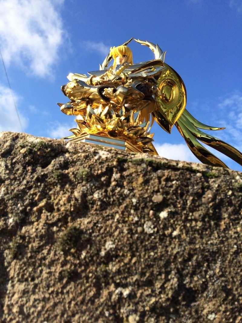 Les photos/montages de votre Myth Cloth EX de la Vierge Soul of Gold (God Cloth) Shaka_14