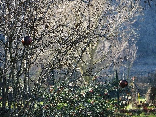 Ambiance et couleurs hivernales, décos naturelles Noyl_e10