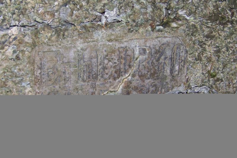 Une partie du Vieil Armand (68) 100_5813