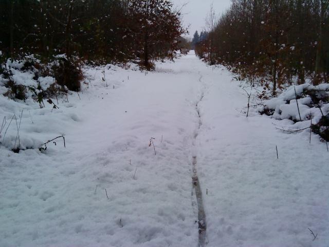 Le VTT sur la neige, vous avez essayé ? Dsc00611