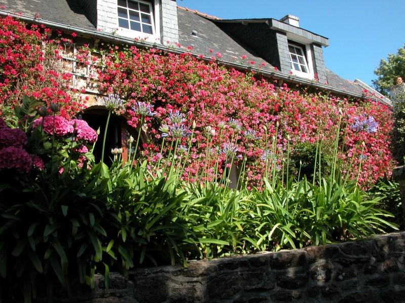 Jardins en Bretagne Dscn6710