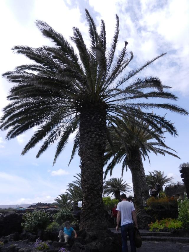 Espagne - Lanzarote 09710