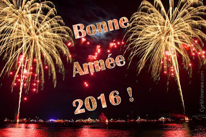 Bonne année 2016 10247210