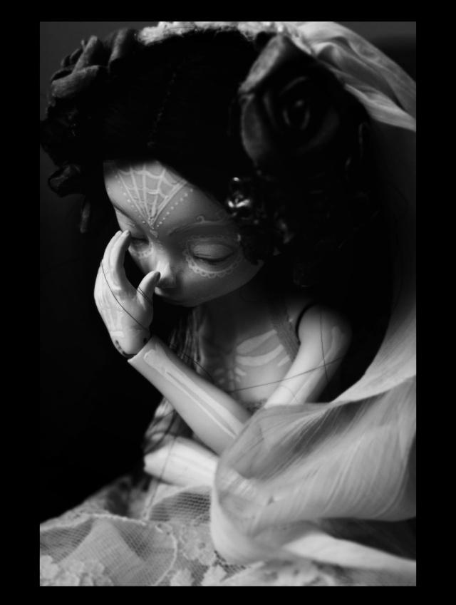 [Thanatos] The Raven (Stop motion), Aria Mystic dolls P.4 - Page 2 W1ok10