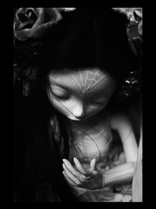 [Thanatos] The Raven (Stop motion), Aria Mystic dolls P.4 - Page 2 W2ok10