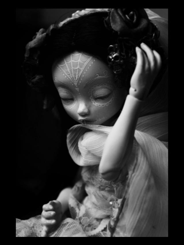 [Thanatos] The Raven (Stop motion), Aria Mystic dolls P.4 - Page 2 W3ok10
