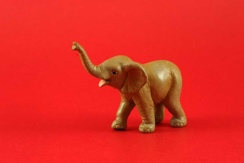 Atabini's new Schleich arrivals Img_8718