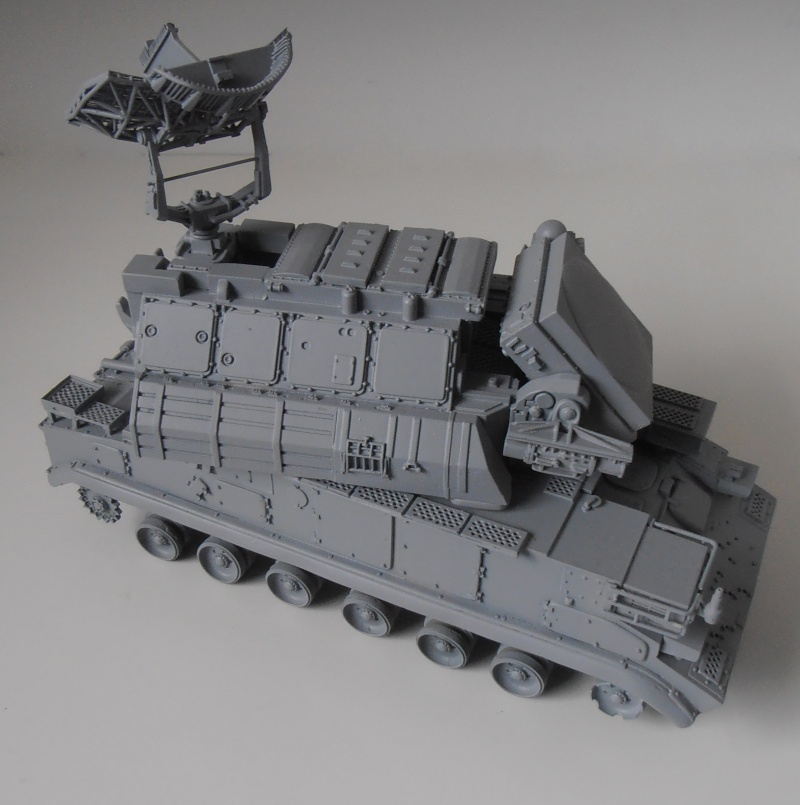 SA 15 Gauntlet  ( Tank Mania au 1/35eme ) Pc011111