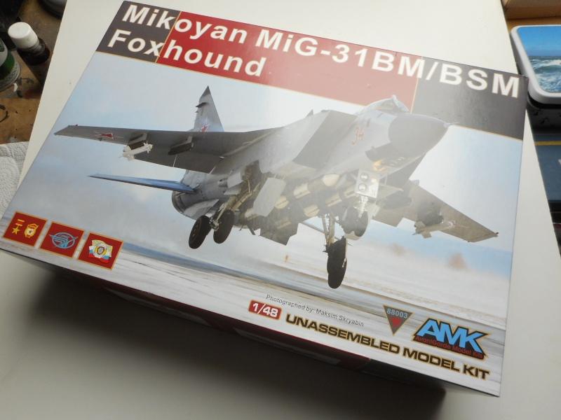 Mig 31 - AMK - 1/48 Dscn9513