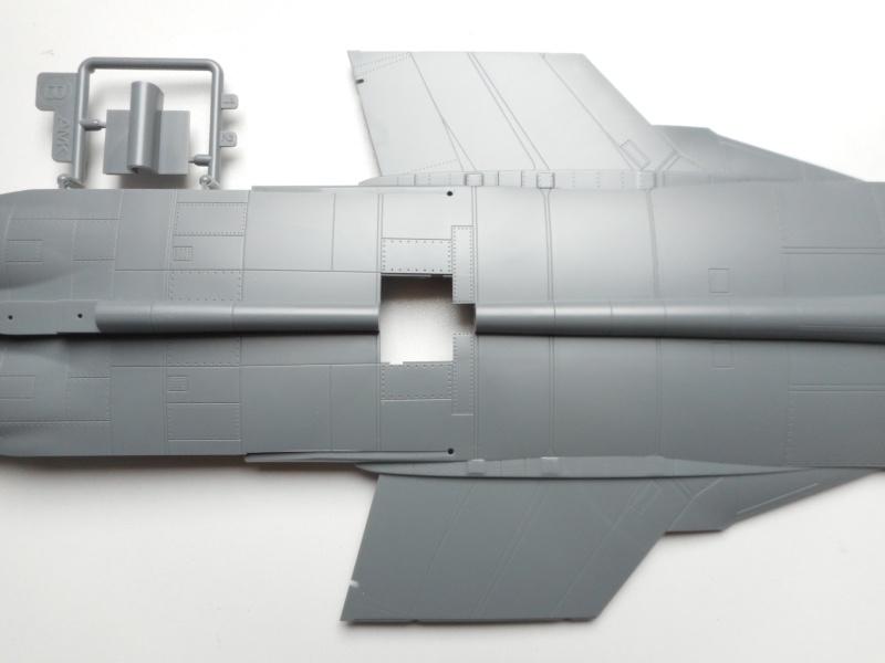 Mig 31 - AMK - 1/48 Dscn9521