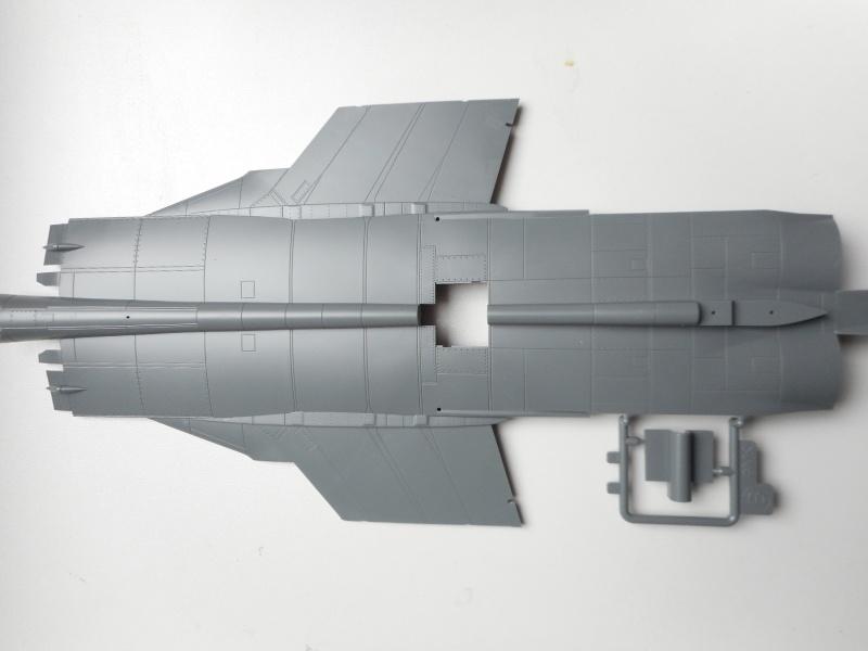 Mig 31 - AMK - 1/48 Dscn9522