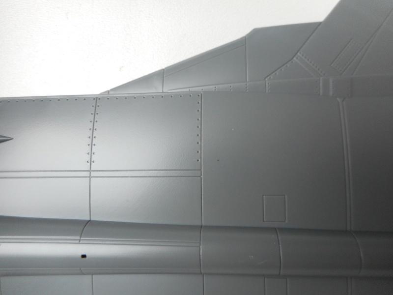 Mig 31 - AMK - 1/48 Dscn9523