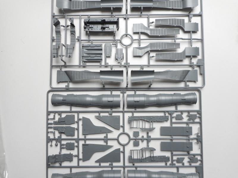Mig 31 - AMK - 1/48 Dscn9524