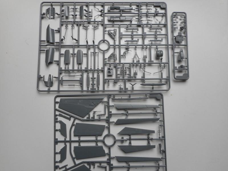 Mig 31 - AMK - 1/48 Dscn9530